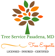 tree service pasadena maryland, tree care experts that are licensed, insured, and certified